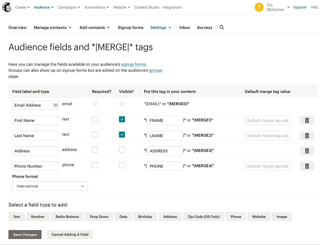Mailchimp website field