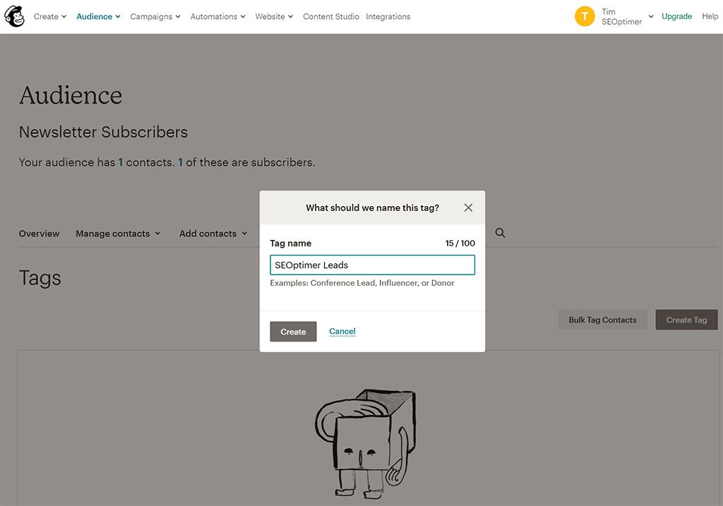 Mailchimp new tag