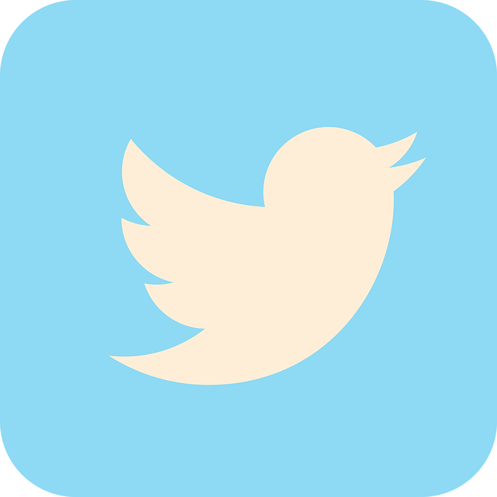 Favicon Twitter