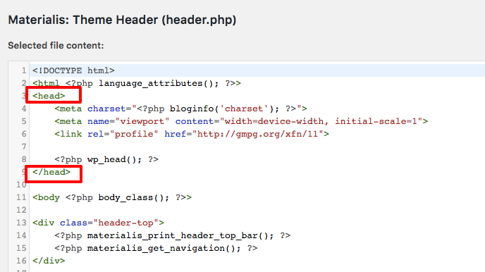 <head> element in the header.php file