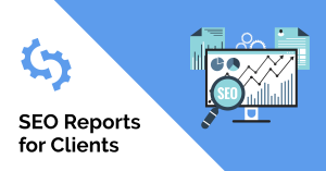 SEO Reports for Clients