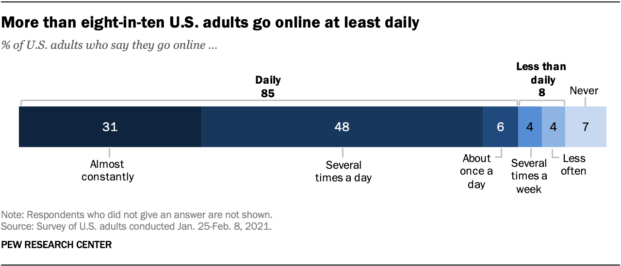 US adults online usage