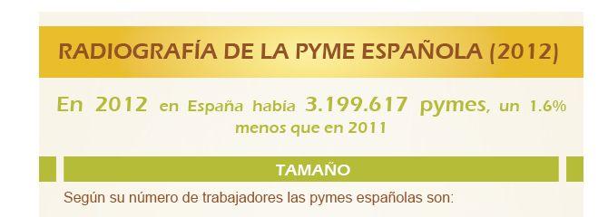 Radiografía de la pyme española en 2012
