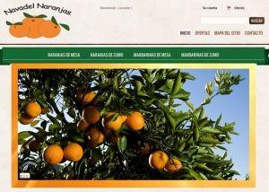 Página interior tienda online Navadel Naranjas