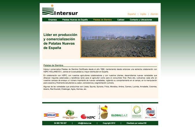 Página interior web Intersur