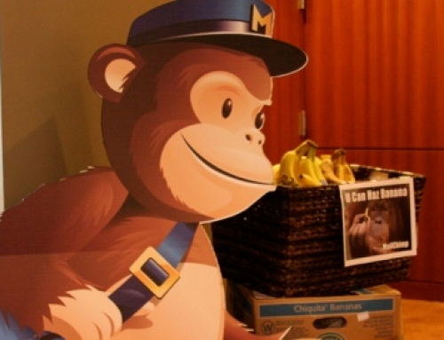 Mailchimp, excelencia en e-mail marketing