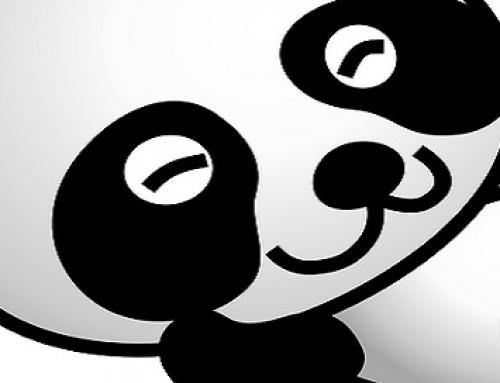 Consejos para el posicionamiento SEO según la nueva actualización del algoritmo de Google Panda 4.0
