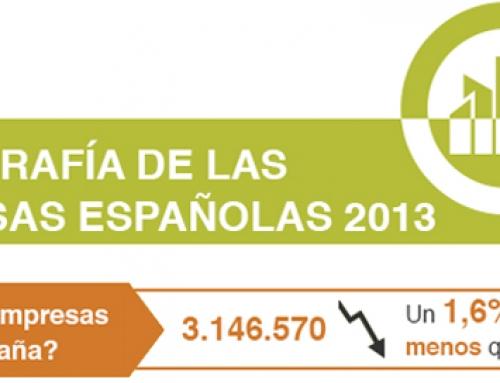 Radiografía de las empresas españolas 2013 [Infografía]