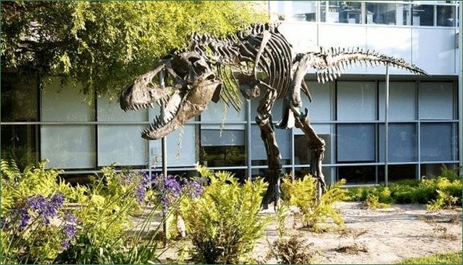 secretos google tiene un Dinosaurio
