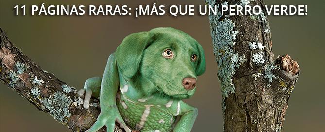 11 páginas raras: ¡más que un perro verde!