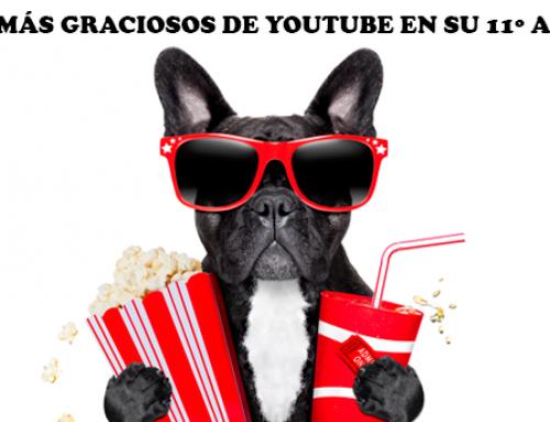 Los vídeos más graciosos de YouTube en su 11º aniversario