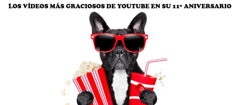 Celebremos los 11 años de YouTube con los vídeos más graciosos del buscador