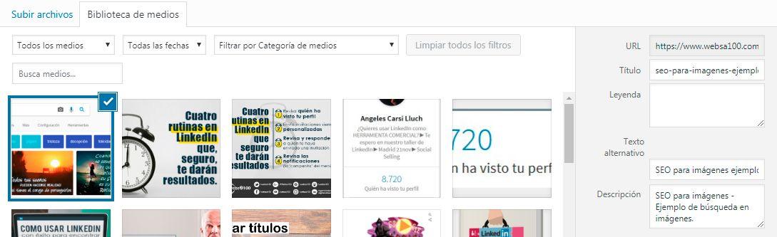 Ejemplo SEO para imágenes - WordPress