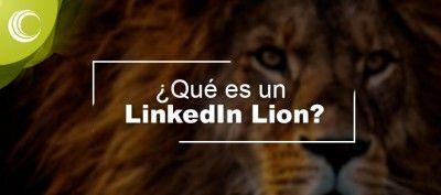 Qué es un LinkedIn Lion