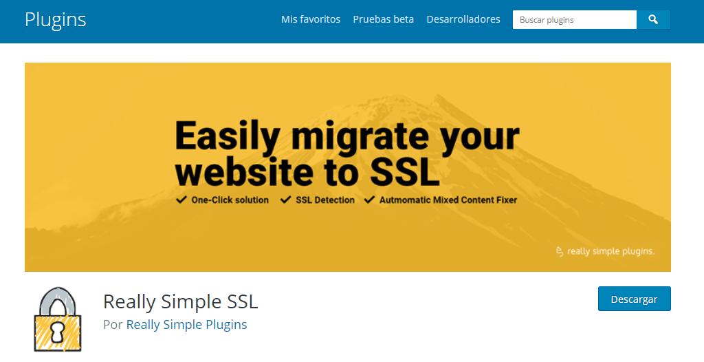 Si ya instalaste WordPress y necesitas activar el SSL